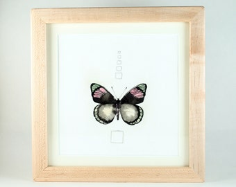 Framed Original Artwork, Detailed Ink Painting of a Butterfly with Silver Leaf and Metallic Pigment, Unique and Genuine Art, Collectible