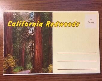 California Redwoods postcard strip