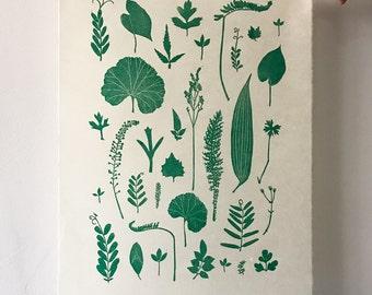 A3 Leaf Arrangement Lino Print, Light Green, Limited Edition of 50