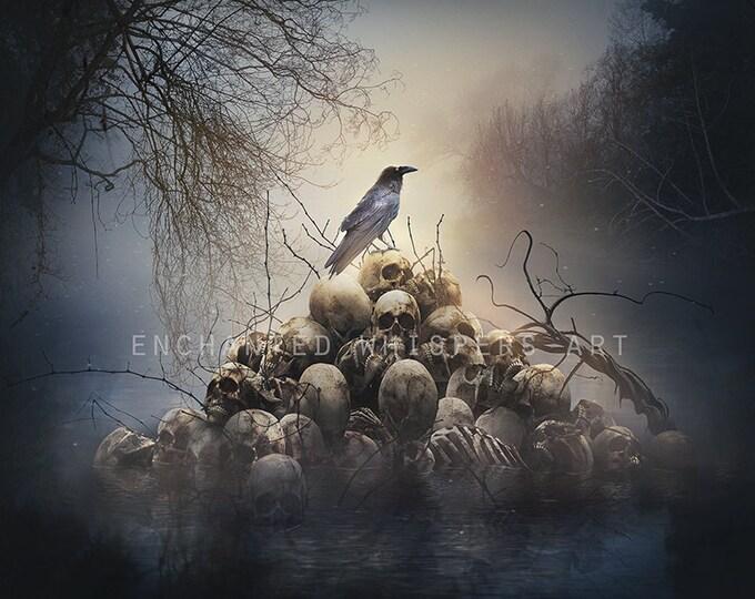 crow and skulls art print