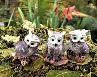 3 Cute Owl Figurines Miniature Fairy Garden Accessories