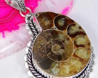 Ammonite fossil 925 pendant