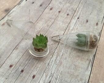 Rose Plant Living Terrarium Necklace Pendant Floating Teardrop Capsule Globe Succulent Charm Echeveria Crassulaceae Plant Jewelry Supplies