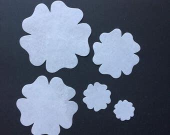 Five-petal Edible Flower-in-a-Bag