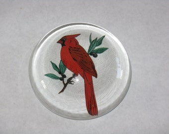 Vintage hand painted glass paperweight cardinal bird