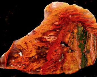 Wonderful Rare Bird Of Paradise Flame Plume Agate End Cut- Old Stock