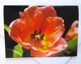 Floral Greeting Card - Flower Card - Tulip Greeting Card - Just Because Card - Get Well Card - Friendship Card - Easter Card - Mother's Day