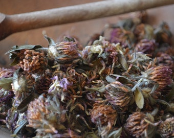 ORGANIC RED clover herb • Trifolium pratense • Dried • Blossoms • Fabaceae • Non-irradiated • Non-gmo Herbs • Whole Herb • USA Grown • 1oz