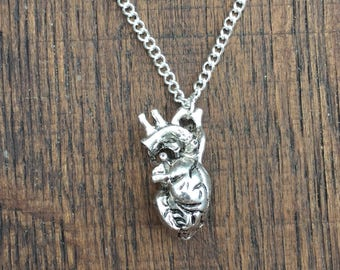 Anatomical Heart Necklace Ref DB1