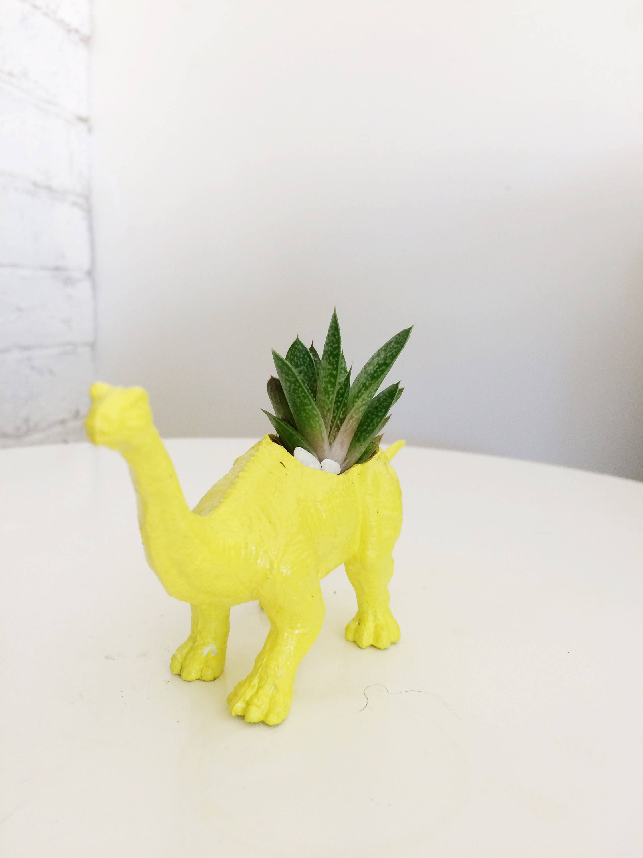 Dinosaur Planter For Cactus Succulents Airplants