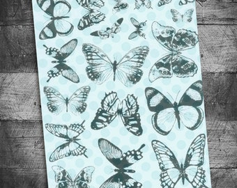 Butterfly stamps, bible journaling stamps, bible journaling, journaling stamps, butterfly specimens, bug stamps, Starving Artistamps