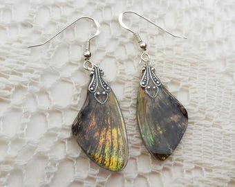 Woodland Fairy Earrings - Sphinx Moth Wing Earrings - Iridescent Wings - Fantasy Jewelry - Moth Wing Earrings - Enchanted Wood