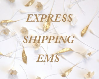 Worldwide International Express Shipping EMS with in 5 ~ 10 working Day To Recevie Your Package