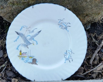 Vintage  Queen's, Rosina China Co. Ltd, Made In England, Pattern Name SeaGull, Salad  Plate ( B )