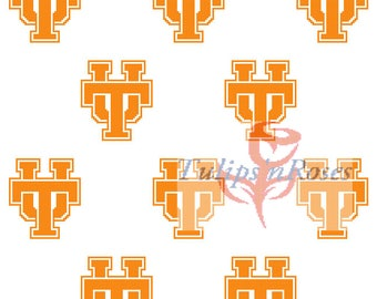 University of Tennessee Graph