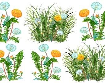 Dandelion watercolor etsy - Fliesenaufkleber gras ...