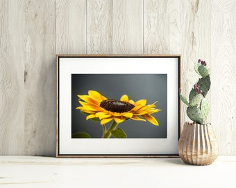 Yellow Sunflower - Fine Art Wall Decor - Flower Wall Art - Gift for Her - Apartment Decoration