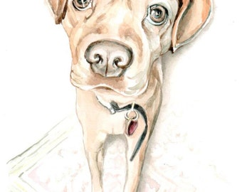 5x7 inch dog portrait, custom, gift for him, animal painting, anniversary, birthday