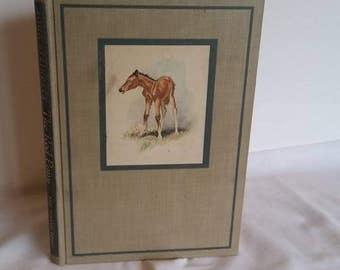 The Red Pony, Vintage Hardback, Steinbeck John,  Hardcover, 1945, Viking Press, Classic American Literature,  Horse Illustrations Watercolor