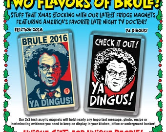 """BRULE Acrylic 2""""x3"""" Refrigerator Magnets - """"Election 2016"""" & """"Ya Dingus"""" Magnets"""