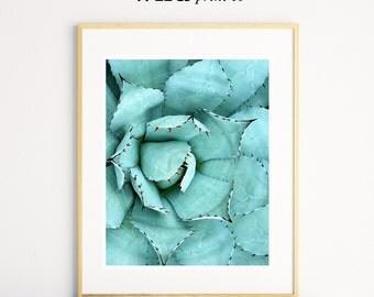 Agave Print, Plant Photography, Plant Prints, Botanical Wall Art, Green Plant, Printable Instant Download, Home Decor Prints