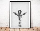 Giraffe Print, Peekaboo Animal, Giraffe Poster, Giraffe Wall Art, Animal Wall Art, Animal Print, Animal printable, Animal download, Giraffe