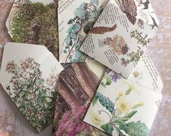 Envelopes | Vintage Paper Envelopes | Vintage Printed Envelopes | Botanical Envelopes | Paper Ephemera Envelopes