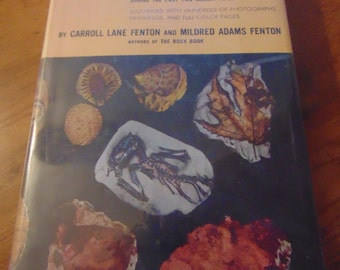The Fossil Book  Carroll Lane Fenton Mildred Adams Fenton  1958   Paleontologists Paleontology
