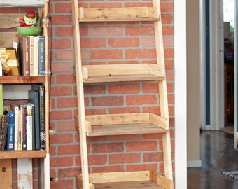 Leaning Ladder Shelf