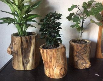 Aspen Log Plant Pots