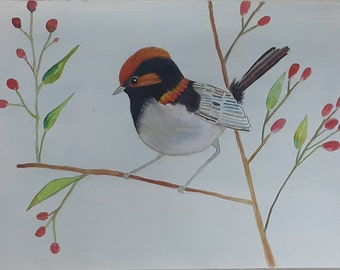 Bird  watercolor painting Vol.01