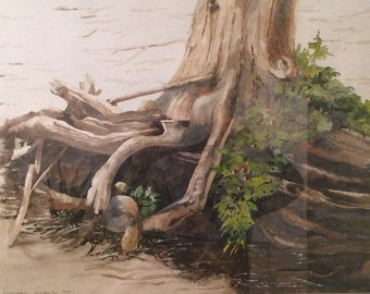 Roots - Original Watercolor Painting by Werner Hans Witschi