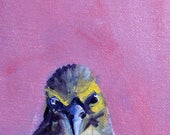 Little Gray Bird, Original Small, Oil Painting, 4x6 Canvas, Pink Background, Minimalist Wall Decor, Tiny Miniature, Wild Creature