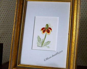 Mexican Hat Original Watercolor Texas Wildflower Painting ACEO Flower Floral Garden Housewarming Gift Miniature