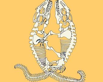 Komodo Skeletons in Love Print