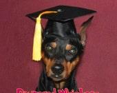 Dog Graduation Cap/Graduation Hat