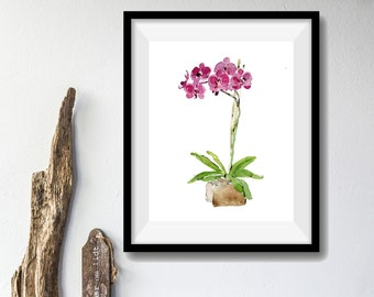 Orchid plant art print ,orchid watercolor print, Orchid  art, still life, zen art, orchid print, botanical, minimalist art, home and garden