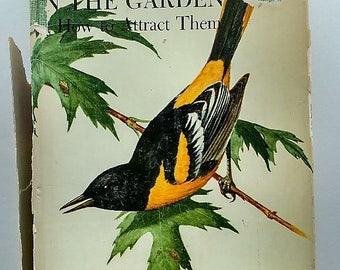 1971 Birds In The Garden