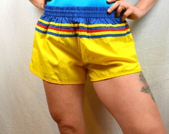 Fun Vintage 80s RAINBOW High Waisted Summer Shorts - Pro Action by Campus