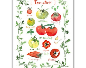 Tomato print, Vegetable chart poster, Kitchen art print, Kitchen wall art, Watercolor garden art, Home décor, Food artwork, Veggie painting