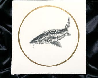Sturgeon August Sturgeon Moon - Original Graphite Drawing with Gold Leaf - Animal Portrait Inspired by the Native American Full Moon Names