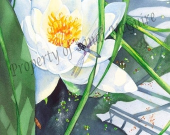 """Watercolor Print """"Lily"""" by Sandi McGuire"""