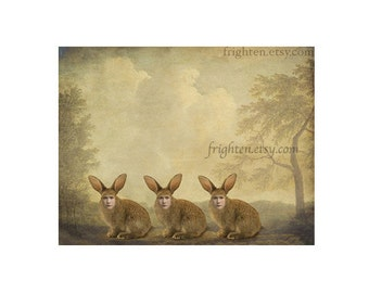 Weird Easter Wall Art Three Rabbits Anthropomorphic Mixed Media Collage Art 8.5 x 11 inch Print