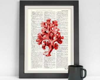 Summer Sale Art Pirnt on Dictionary or Encyclopedia Page Curly Red Coral sealife wall art, beach house decor, wall art SEA045