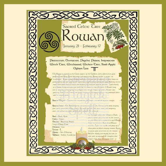 ROWAN CELTIC SACRED Tree - Digital Download, Book of Shadows Page,Grimoire, Spells, White Magick, Wicca, Witchcraft, Herb Magic