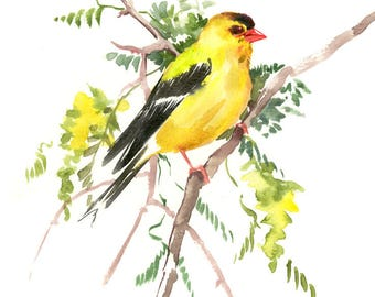 American Goldfinch Artwork bird art original watercolor one of a kind painting, yellow green wall art, watercolor art, goldfinch birds bird