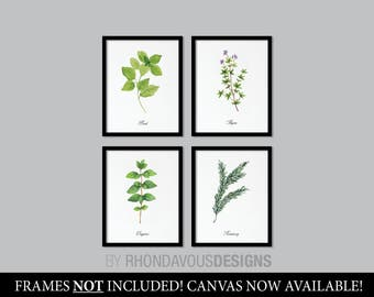 Kitchen Decor. Kitchen Art. Herbs Art Print. Herb Art. Herbs Decor. Herbs Kitchen Art Print. Kitchen Wall Art. Wall Decor. Home Decor NS-855