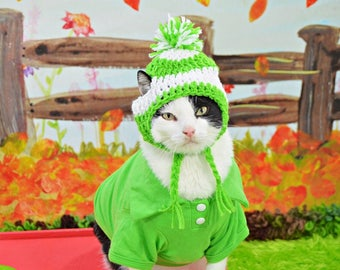 Dog Hat, Cat Hat, Pet Hat, Striped Dog Hat, Green Dog Hat, Green Cat Hat, Dog Costume, Pet Costume, Green Pet Hat, Striped Pet Hat