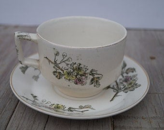 Tea Cup and Saucer (Set of 8) - T. Furnival & Sons - Hawthorn Style