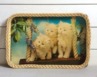 1970s Kitsch Kittens Photographic Image Tray with Basket Weave Sides & Bead Detail
